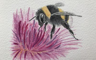 Als honing